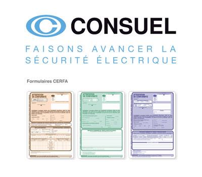 Logo du CONSUEL